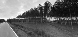 Kozjak – andata e ritorno
